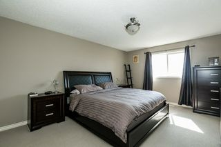 Photo 12: 64 NAPLES Way: St. Albert House for sale : MLS®# E4156140