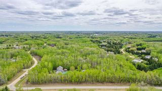 Photo 29: 52437 RGE RD 21: Rural Parkland County House for sale : MLS®# E4158183
