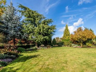 Photo 15: 3240 Majestic Dr in COURTENAY: CV Crown Isle House for sale (Comox Valley)  : MLS®# 827726