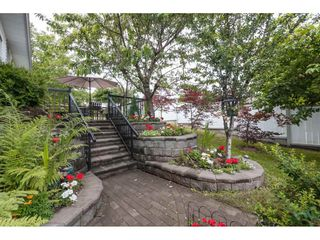 Photo 19: 33089 MYRTLE AVENUE in Mission: Mission BC House for sale : MLS®# R2412063