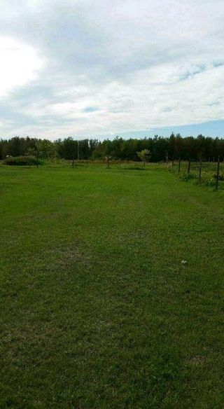 Photo 4: 23003 Twp Rd 572: Rural Sturgeon County Rural Land/Vacant Lot for sale : MLS®# E4188332