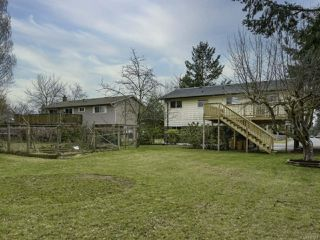 Photo 31: 1446 Dogwood Ave in COMOX: CV Comox (Town of) House for sale (Comox Valley)  : MLS®# 836883
