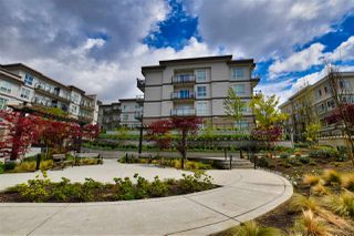 "Photo 13: 118 13728 108 Avenue in Surrey: Whalley Condo for sale in ""Quattro 3"" (North Surrey)  : MLS®# R2451793"