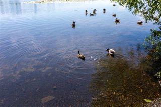 Photo 12: 6036 BRANTFORD Avenue in Burnaby: Upper Deer Lake House for sale (Burnaby South)  : MLS®# R2470384