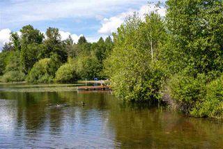 Photo 19: 6036 BRANTFORD Avenue in Burnaby: Upper Deer Lake House for sale (Burnaby South)  : MLS®# R2470384