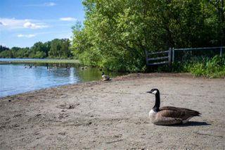 Photo 14: 6036 BRANTFORD Avenue in Burnaby: Upper Deer Lake House for sale (Burnaby South)  : MLS®# R2470384