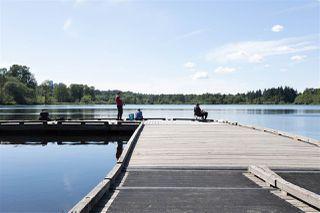 Photo 17: 6036 BRANTFORD Avenue in Burnaby: Upper Deer Lake House for sale (Burnaby South)  : MLS®# R2470384