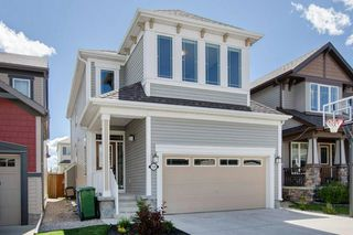 Photo 32: 130 WINDRIDGE Road SW: Airdrie Detached for sale : MLS®# A1014817