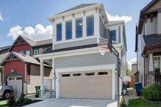 Photo 33: 130 WINDRIDGE Road SW: Airdrie Detached for sale : MLS®# A1014817