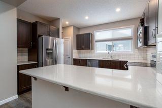 Photo 19: 2835 ANTON Wynd in Edmonton: Zone 55 House for sale : MLS®# E4220511