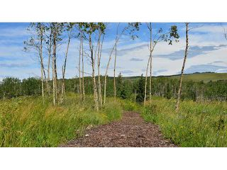 Photo 3: 247 COTTAGECLUB Crescent in COCHRANE: Rural Rocky View MD Vacant Lot for sale : MLS®# C3602242