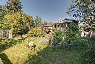 Photo 22: V1088410 21632 Donovan Ave Maple Ridge V2X 3A3