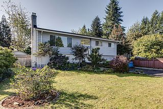 Photo 1: V1088410 21632 Donovan Ave Maple Ridge V2X 3A3