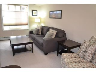 Photo 9: 113 7110 80 Avenue NE in Calgary: Saddle Ridge Condo for sale : MLS®# C4051517