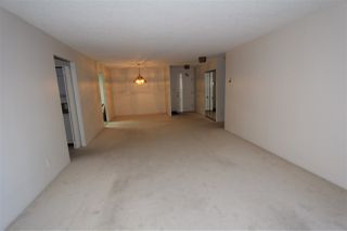 Photo 14: 204 518 MOBERLY Road in Vancouver: False Creek Condo for sale (Vancouver West)  : MLS®# R2114074