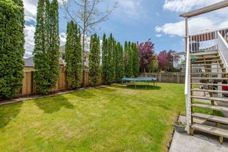 Photo 20: 35458 CALGARY Avenue in Abbotsford: Abbotsford East House for sale : MLS®# R2170177