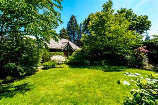 Photo 19:  in Vancouver: South Granville House for sale (Vancouver West)  : MLS®# R2177913
