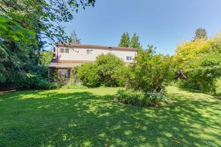 Photo 2: 4670 48B Street in Delta: Ladner Elementary House for sale (Ladner)  : MLS®# R2186412