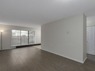 Photo 5: 144 8111 RYAN ROAD in Richmond: South Arm Condo for sale : MLS®# R2123418