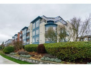 "Photo 1: 206 20277 53 Avenue in Langley: Langley City Condo for sale in ""Metro 11"" : MLS®# R2246436"