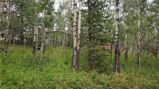 Photo 8: Winchell Lake Road Lot 2, TWP Road 290A: Rural Mountain View County Detached for sale : MLS®# C4200686