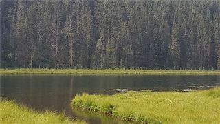 Photo 21: Winchell Lake Road Lot 2, TWP Road 290A: Rural Mountain View County Detached for sale : MLS®# C4200686