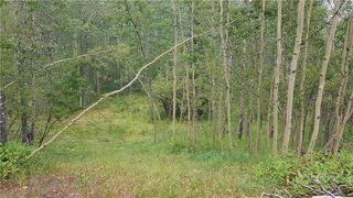 Photo 7: Winchell Lake Road Lot 2, TWP Road 290A: Rural Mountain View County Detached for sale : MLS®# C4200686