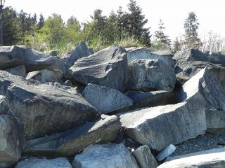 Photo 19: 8752 DRIFTWOOD ROAD in BLACK CREEK: CV Merville Black Creek Land for sale (Comox Valley)  : MLS®# 805655