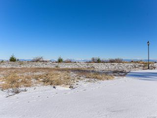 Photo 39: 8752 DRIFTWOOD ROAD in BLACK CREEK: CV Merville Black Creek Land for sale (Comox Valley)  : MLS®# 805655