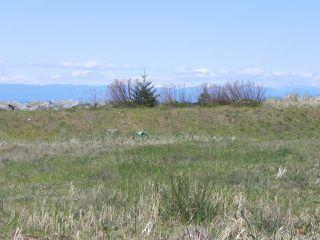 Photo 16: 8752 DRIFTWOOD ROAD in BLACK CREEK: CV Merville Black Creek Land for sale (Comox Valley)  : MLS®# 805655