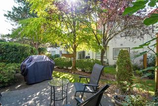 Photo 19: 25 16155 82 Avenue in Surrey: Fleetwood Tynehead Townhouse for sale : MLS®# R2345451