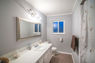 Photo 12: 3920 COAST MERIDIAN Road in Port Coquitlam: Oxford Heights House for sale : MLS®# R2349523
