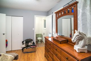 Photo 13: 3920 COAST MERIDIAN Road in Port Coquitlam: Oxford Heights House for sale : MLS®# R2349523