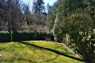 Photo 20: 33182 EASTVIEW Court in Abbotsford: Central Abbotsford House for sale : MLS®# R2351428