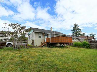 Photo 18: 2951 Cedar Hill Rd in VICTORIA: Vi Oaklands Single Family Detached for sale (Victoria)  : MLS®# 816786