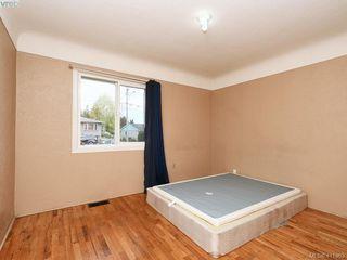 Photo 9: 2951 Cedar Hill Rd in VICTORIA: Vi Oaklands Single Family Detached for sale (Victoria)  : MLS®# 816786