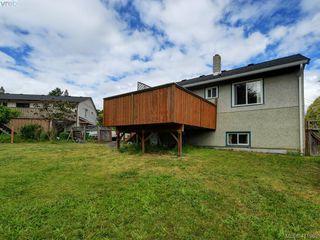 Photo 19: 2951 Cedar Hill Rd in VICTORIA: Vi Oaklands Single Family Detached for sale (Victoria)  : MLS®# 816786