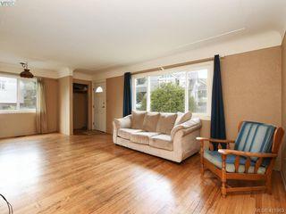 Photo 4: 2951 Cedar Hill Rd in VICTORIA: Vi Oaklands Single Family Detached for sale (Victoria)  : MLS®# 816786