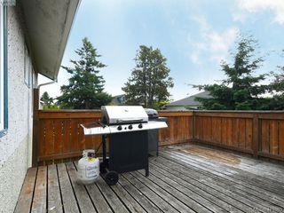 Photo 16: 2951 Cedar Hill Rd in VICTORIA: Vi Oaklands Single Family Detached for sale (Victoria)  : MLS®# 816786