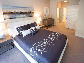 Photo 13: 206 6168 LONDON ROAD: Steveston South Home for sale ()  : MLS®# R2065203