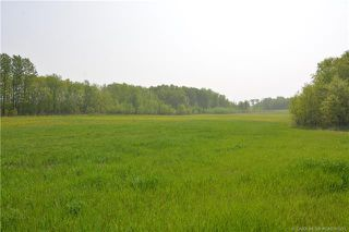 Main Photo: ON Range Road 240 in Rural Red Deer County: Land for sale : MLS®# CA0188251