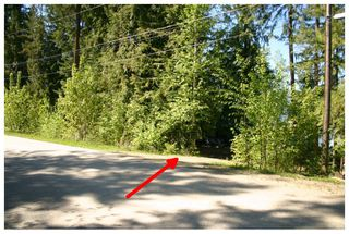 Photo 30: 2477 Rocky Point Road in Blind Bay: Waterfront House for sale (Shuswap)  : MLS®# 10064890
