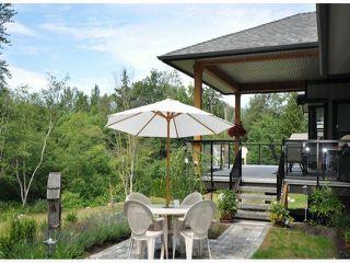 Photo 19: 8677 JONES TE in Mission: Hatzic House for sale : MLS®# F1400326