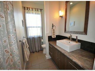 Photo 18: 8677 JONES TE in Mission: Hatzic House for sale : MLS®# F1400326