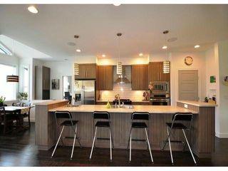 Photo 8: 8677 JONES TE in Mission: Hatzic House for sale : MLS®# F1400326