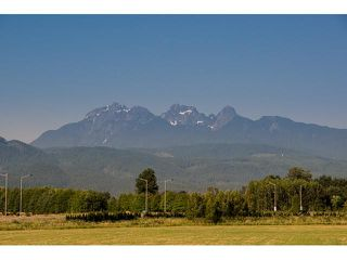 "Photo 19: 12475 DAVENPORT Drive in Maple Ridge: Northwest Maple Ridge House for sale in ""MCIVOR MEADOWS"" : MLS®# V1050883"