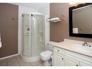Photo 18: 13042 DOUGLAS RIDGE Grove SE in CALGARY: Douglas Rdg_Dglsdale Residential Detached Single Family for sale (Calgary)  : MLS®# C3609823