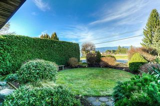 Photo 19: 20418 POWELL Avenue in Maple Ridge: Northwest Maple Ridge House for sale : MLS®# R2033474