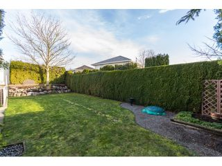 Photo 18: 31466 UPPER MACLURE Road in Abbotsford: Abbotsford West House for sale : MLS®# R2037745