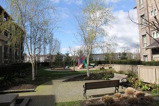 """Photo 14: 314 21009 56 Avenue in Langley: Salmon River Condo for sale in """"Cornerstone"""" : MLS®# R2048798"""